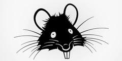 rat-head