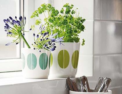 Plantas para decorar cocinas dise o y decoracion de - Macetas para cocina ...