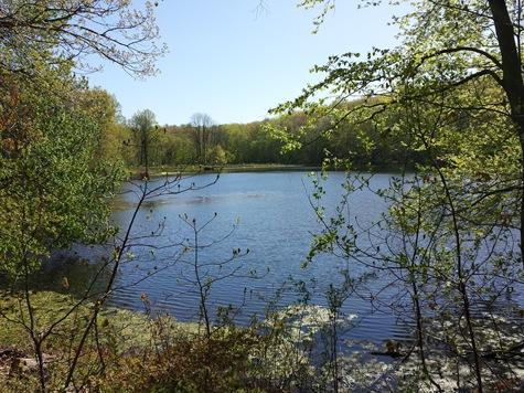Swan Lake Rockefeller State Park