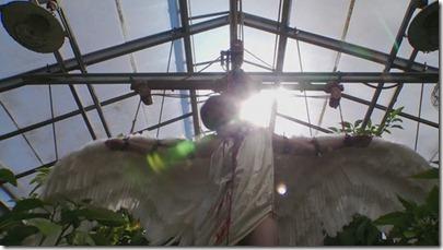 dexter-angel-body