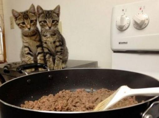 Уж полночь близится, а ужина все нет!..