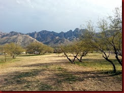 20140225 Catalina State Park