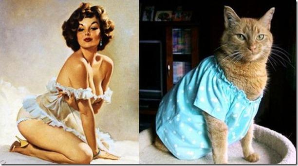 cats-pinup-models-15
