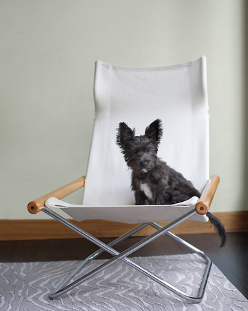 Heidi Posner's puppy, Moo, really takes center stage here. (Martha Stewart Living)