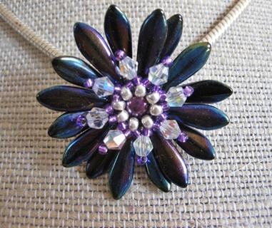 Blue Violet Daisy