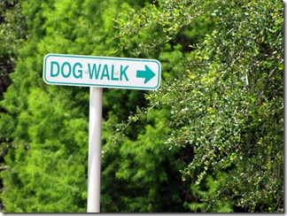 Doggiepark05-23-13b