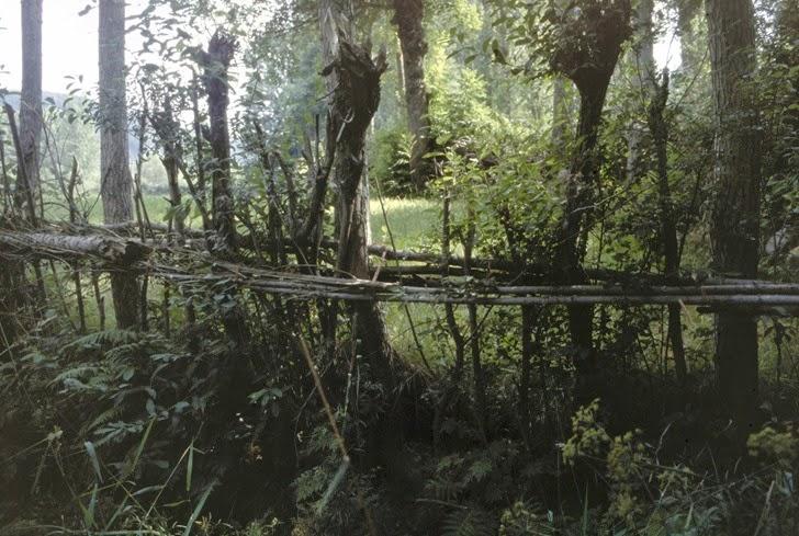 716 prados del valle Gordo