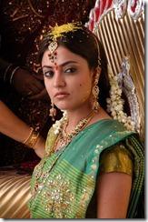 Nisha-Agarwal-new hot pic3