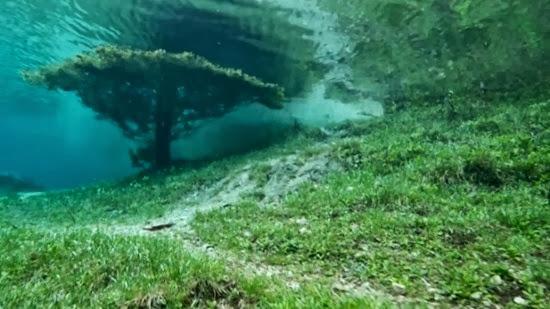 Parque sub-aquático 03