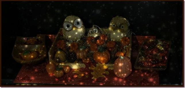 OwlsNightIMG_6499