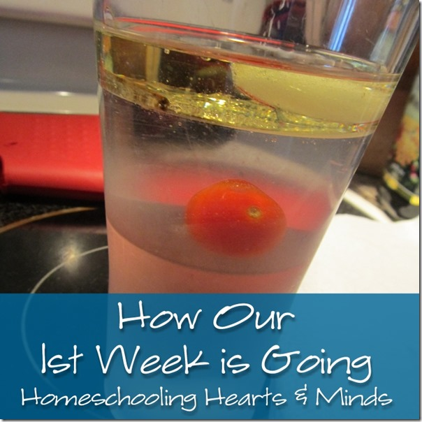 How our 1st week is going at Homeschooling Hearts & Minds