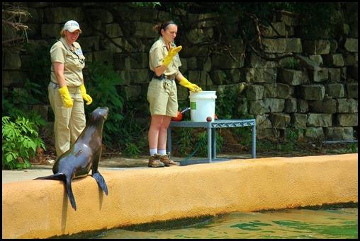 Zoo4 393