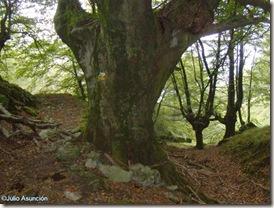 Gran haya en el descenso del Anboto -   Bizkaia