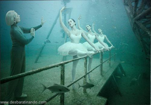 vandenberg underwater photography fotos submarinas navio naufragado desbaratinando (8)