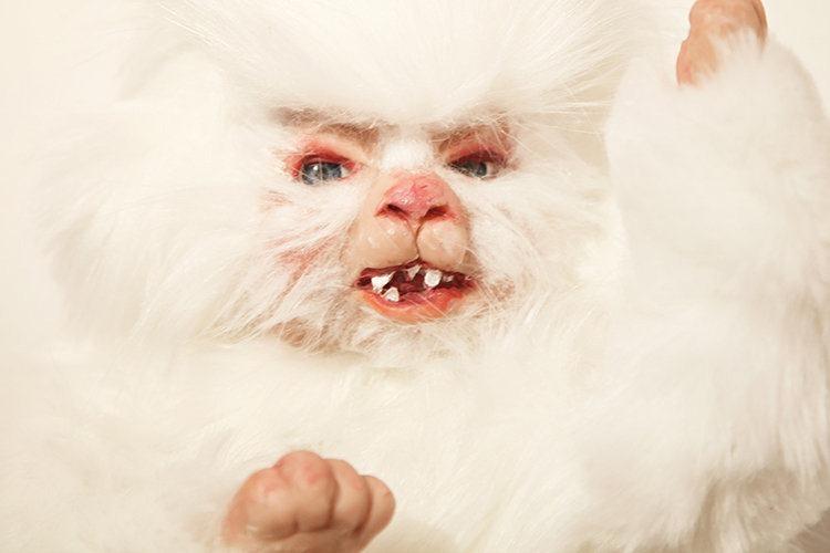 bebe-humano-cachorro-deubandeira-08