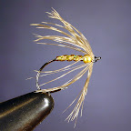 SOFT HACKLE WOODCOCK & GOLD.jpg