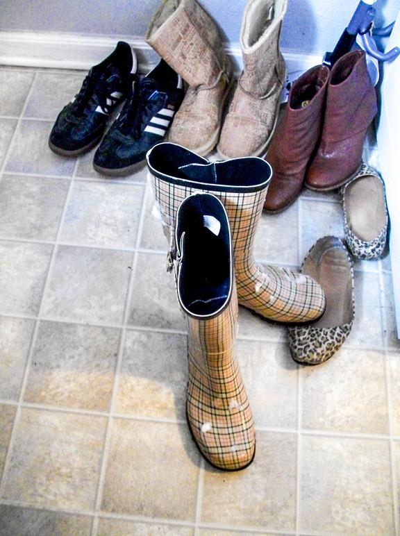 Snow Shoe Pile