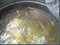 ikan keli kampung - http://kelisabah.blogspot.com