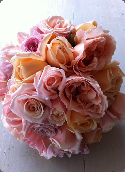 just roses 400346_349852245039675_208571627_n  the bouquets od ascha jolie au
