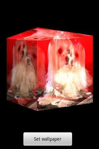 3D cute dog A6