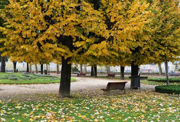 Glória Ishizaka - Folhas de Outono - Coimbra 1a