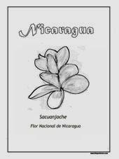 Sacuanjoche, Flor Nacional de Nicaragua 1