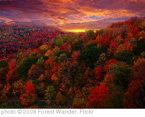 'Fall Foliage Photography' photo (c) 2008, Forest Wander - license: http://creativecommons.org/licenses/by-sa/2.0/