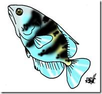 peces clipart blogcolorear (33)