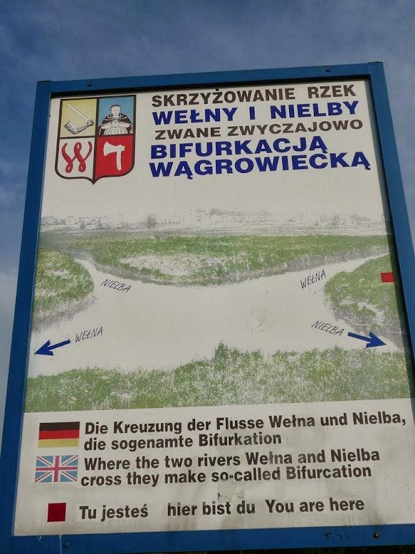 wagrowiec-bifurcation-2