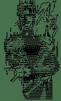 Kakyoin Noriaki (JOJO'S BIZARRE ADVENTURE)[AA]