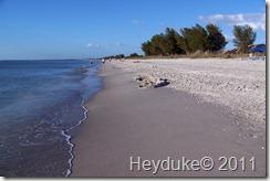 11-26-11 Captiva Island Florida 011