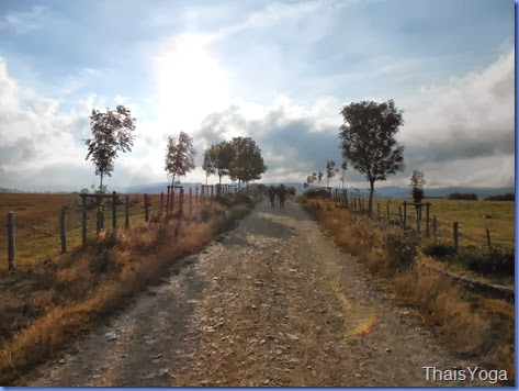 caminho de santiago 305