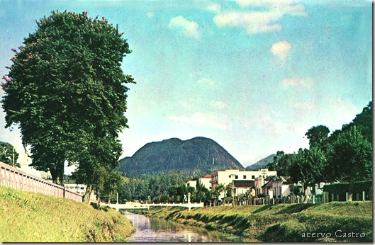 rio bengala_bouganvilias_acervo_castro