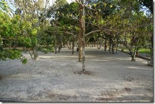 área de barracas bem arborizada