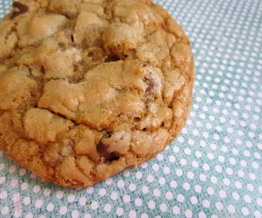 chocolate_chip_cookie_2