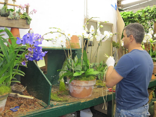 Hard at work in the back of the store working on different arrangements.