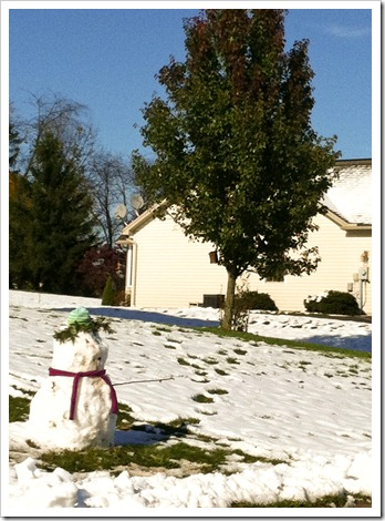 snowman in the fall