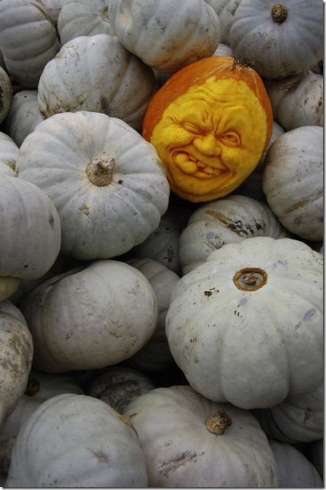 awesome pumpkin carving 20