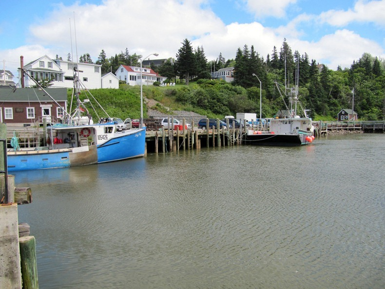 Tides at the bay of fundy amusing planet for Tides for fishing louisiana