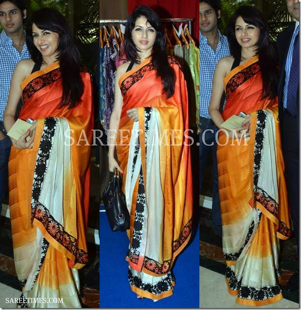 Bhjagyashree_Tricolor_Saree