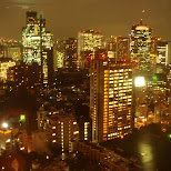 gorgeous night view from tokyo tower in Tokyo, Tokyo, Japan