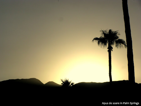 Obiective turistice SUA: Palm Springs