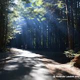 Kanada_2012-09-18_2883.JPG
