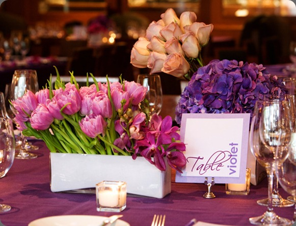 03 sonia events and curtis dahl photo