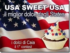 Usa sweet Usa il miglior dolce dagli States banner (1)