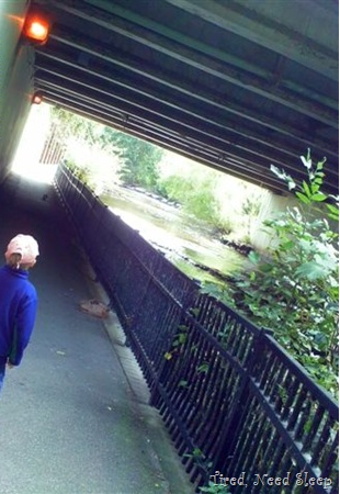 walking along the creek, through a tunnel