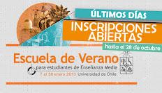 Última semana de postulaciones para Escuela de Verano 2013