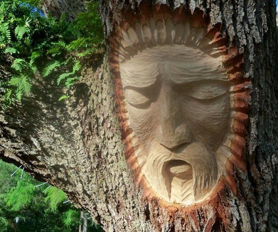 espírito árvore 05