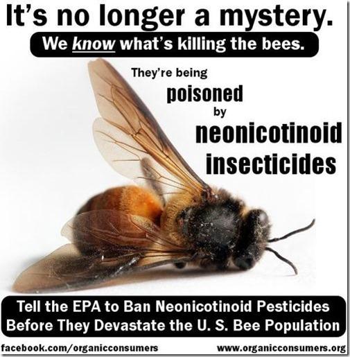 beesdeath