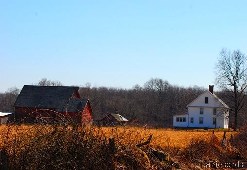 7. farm-kab